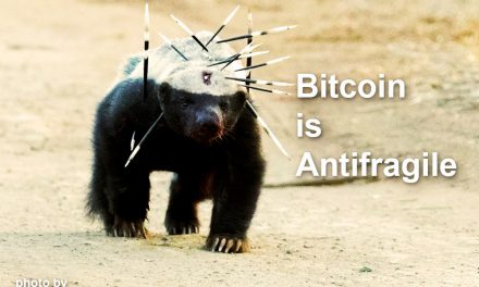Bitcoin is Antifragile
