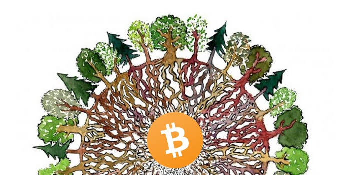 Bitcoin is a Catalyst for Human Evolution